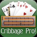 Cribbage Pro Online! mobile app icon