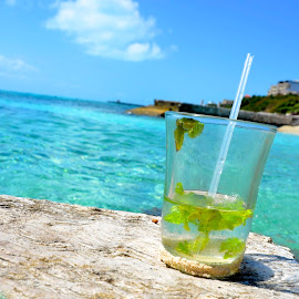 A Mojito in Paradise by Stephanie Tyson - Landscapes Travel ( mojito, turquoise, tipsy, booze, ocean, travel, beach, caribbean, color, colors, landscape, portrait, object, filter forge )