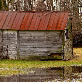 Shed by Dan Ferrin - Buildings & Architecture Decaying & Abandoned ( dilapidated, shed, building, abandoned building, architecture )