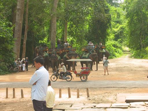 Środki transportu dostępne w Angkor