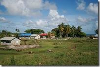 Tonga 154