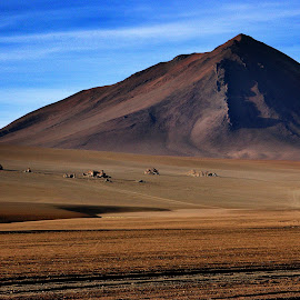On the road by Guy Gillade - Landscapes Deserts ( bolivia )