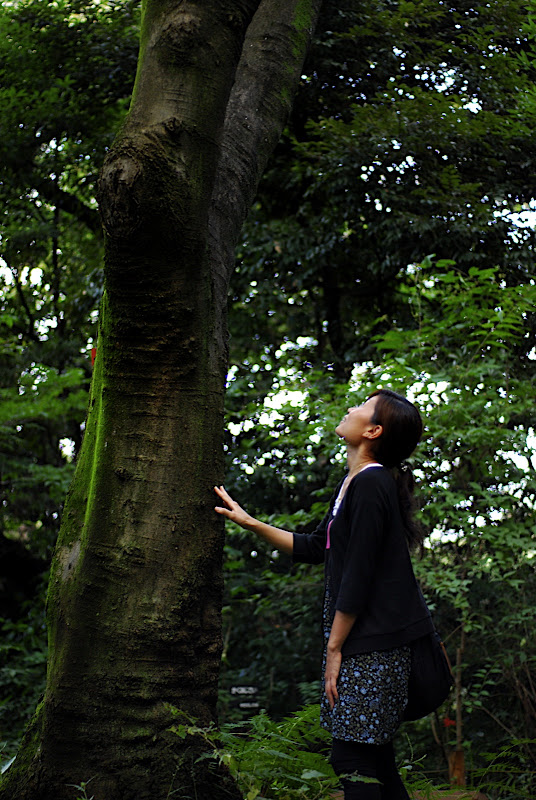 Aya looks up a tall tree in Shizen Kyoikuen