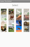 Screenshot of Guess The Animal Quiz