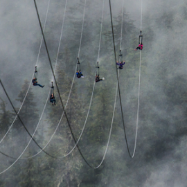 Ziplining in the clouds by Hans DeBruyn - Sports & Fitness Other Sports ( hoonah, alaska, zipline, icy strait, mist )
