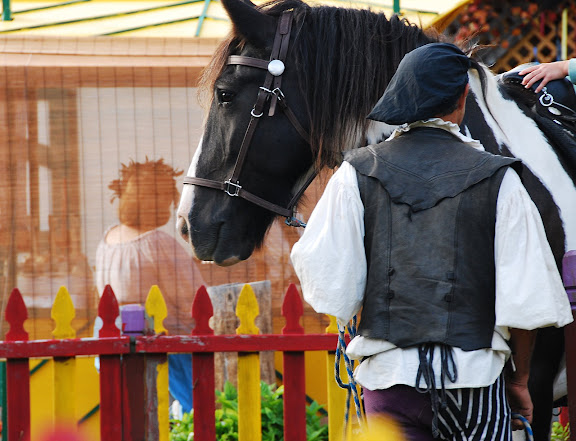 Renaissance festival horses