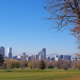 View from City Park by Sean M. Chase - City,  Street & Park  Skylines ( sky, parks, denver, colorado, landscape, city park )