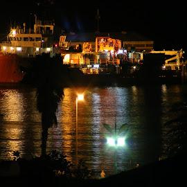 Harbor Lights by Lee Phillipson - Landscapes Travel