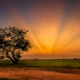 Shooting light  by Liquid Lens - Landscapes Sunsets & Sunrises