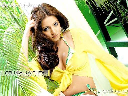 hot_sexy_celina_jaitley_masala_pics_gallery