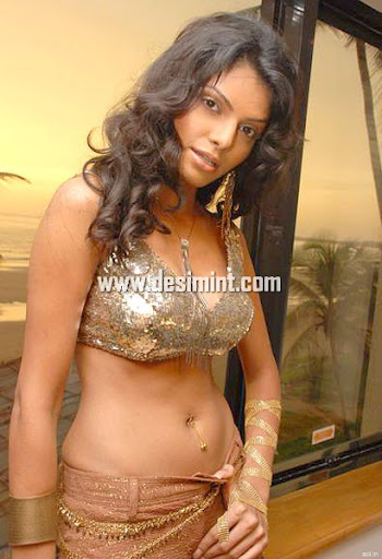 Hot Indian Actress Sherlyn Chopra Sexy Masala Pics Gallery