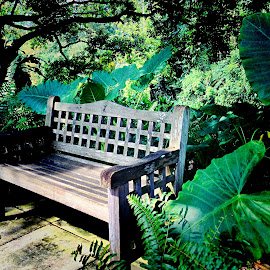 Bench by Janette Ho - Artistic Objects Furniture ( public, bench, furniture, object )