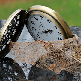 by Dipali S - Artistic Objects Other Objects ( decomposed, pocket watch, time, watch, jewelry, leaf, object )