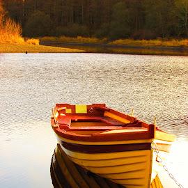 Brand new boat by Paula O'Sullivan - Transportation Boats ( orange, reflection, lake, yellow, boat )