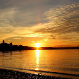 warm sunset by Lawrence Doane - Landscapes Sunsets & Sunrises