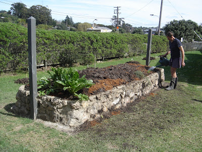 The new raised bed gardens