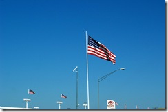 flags across America
