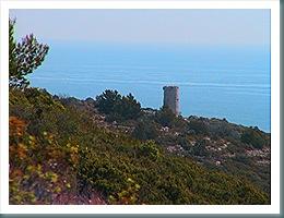 Torre Badum desde Despoblado de Irta