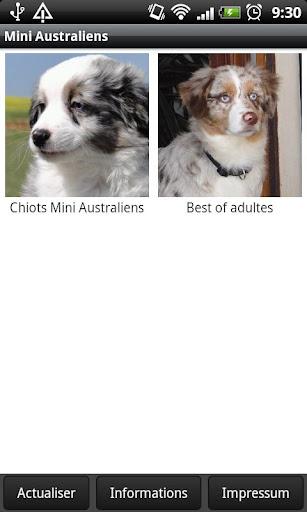 Mini Australiens