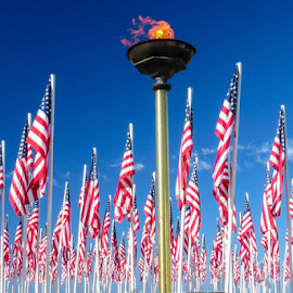 Celebration of Honor for Our Veterans by Vonelle Swanson - News & Events US Events