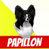 Papillon Dog Breeds APK for Bluestacks