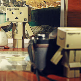 say cheese!!! by Rully Kustiwa - Artistic Objects Toys ( canon ef 50mm/1.8, danbo, strobist, toys, canon eos 500d, toy, object,  )