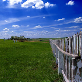 Forgotten Soliders  by Dustin White - City,  Street & Park  Cemeteries ( fence, cemetery, fort, landscape, forgotten, military,  )