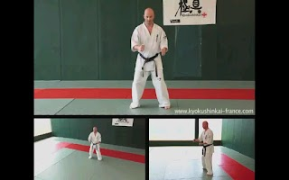 Screenshot of Kyokushin - Stances & Moves