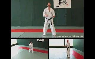 Screenshot of Kyokushin - Stances & Moves
