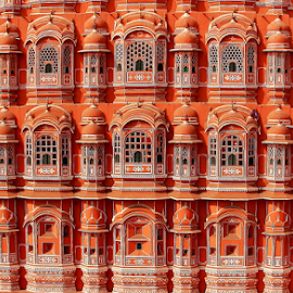 Windows 1799 by Sridhar Balasubramanian - Buildings & Architecture Architectural Detail ( hawa mahal, jaipur, rajasthan, india, windows )