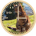 Cat 6 Tabby Analog Clock icon