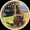 Cat 6 Tabby Analog Clock icon
