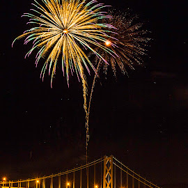 Fireworks over the Ohio by Jeff Lebovitz - News & Events Entertainment ( ohio, bright, explosion, fireworks, yellow, bridge, river )