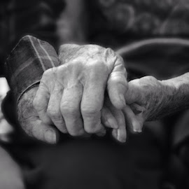True love  by Roxanne McCallister - People Couples ( black and white, true love, old couple, holding hands )