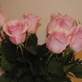 Roses by Dakotaa Rommelaeree - Wedding Other