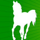 Horse Racing Handicapping icon