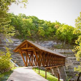 Covered Bridge  by Melissa Sweet-Leavins - Buildings & Architecture Bridges & Suspended Structures ( missouri, autumn, bridge, fall, color, colorful, nature )