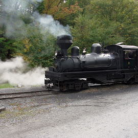 Cass Scenic Railroad by Janice Burnett - Transportation Trains ( steam engine, steam train ride, cass scenic railroad, west virginia, locomotive, train )