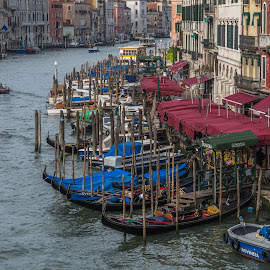 Venice Bend by Sean Heatley - City,  Street & Park  Historic Districts ( holiday, water, gondola's, boats, venice, posts, travel, italy, canal, city )