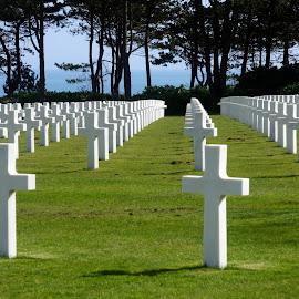 American Cemetery, Omaha Beach by Anita Berghoef - City,  Street & Park  Cemeteries ( omaha beach, cemetery, american cemetery, normandië, france, parc, normandy, cross )