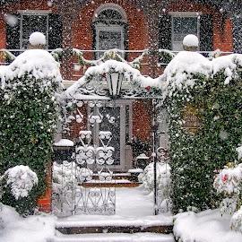 Winter Gate by Jim Salvas - Buildings & Architecture Homes ( home, doorway, snow, christmas, windows, wrought iron, steps, entrance, pillars, gate )