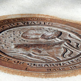 The Rusty Bass by Jamie Boyce - City,  Street & Park  Neighborhoods ( sewer lid, lid, cover, street, clearwater, rust, manhole cover, design,  )