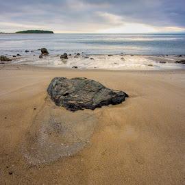 Steep Hill Rock by David Stone - Landscapes Beaches ( shore, sand, texture, plum island, rock, crane beach, ipswich bay, crane estate )