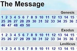 Screenshot of Bible The Message