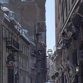 Morning walk in february in rue Sous-le-Cap, old Quebec city. by Réjean Côté - City,  Street & Park  Street Scenes ( building, rue, street, matin, sous-le-cap, old quebec city, morning, marche, vieux-quebec, hiver, édifice, sky, winter, snow, ciel, neige, walk )