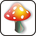 Mushroom doo-dad red/yell icon