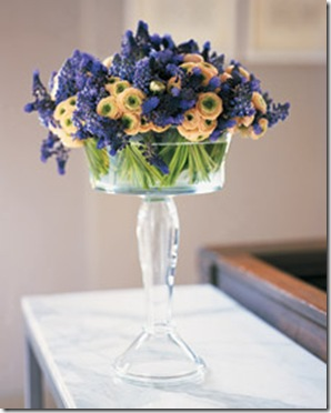 ranunculus and muscari