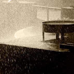 FONTANA by Zeljko Sajko-Saja - Nature Up Close Water ( kiša, park, priroda, voda, #GARYFONGDRAMATICLIGHT, #WTFBOBDAVIS )