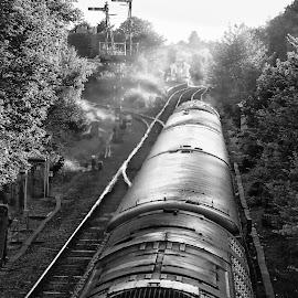 Rolling stock by Glenn Long - Transportation Trains