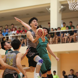 IVP-01 by Joseph Lee - Sports & Fitness Basketball ( basketball, ivp, fitness, varsity, sports )